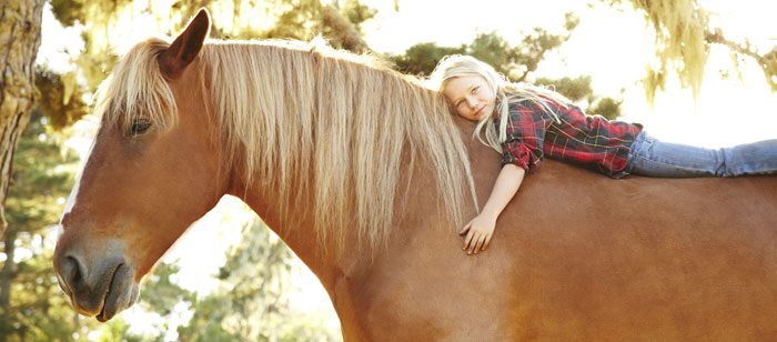 Positive effects of horses and dogs on autism